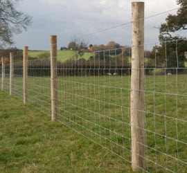 stockproof fencing plymouth
